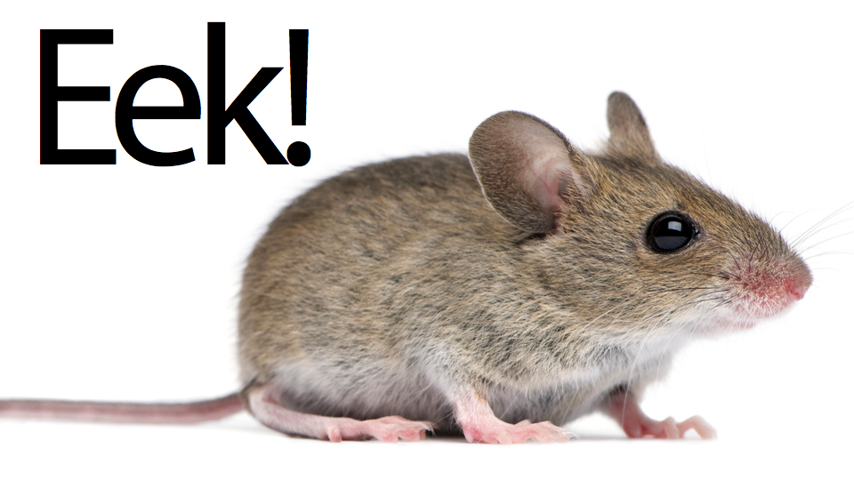 eekmouse